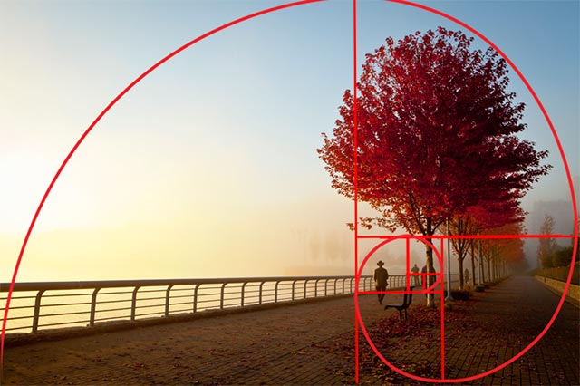 the golden ratio in photography