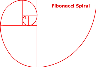 Graphic of Fibonacci Spiral for Golden Ratio photo composition by Sarah Vercoe.