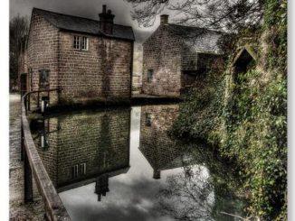 6 crawford canal stevacek