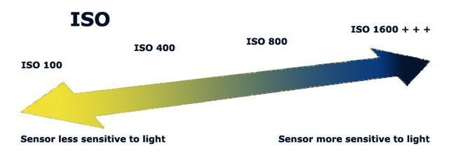 understanding camera ISO - dslr photography basics