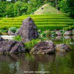 Focusing on Asian Photographer John Lander