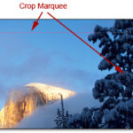 Cropping & Resizing Your Image in Photoshop