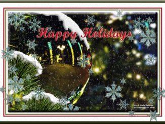 HolidayCard_4_2010