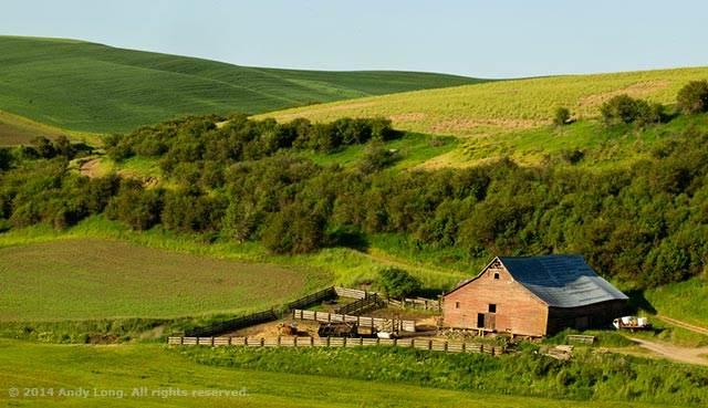 layers-barn