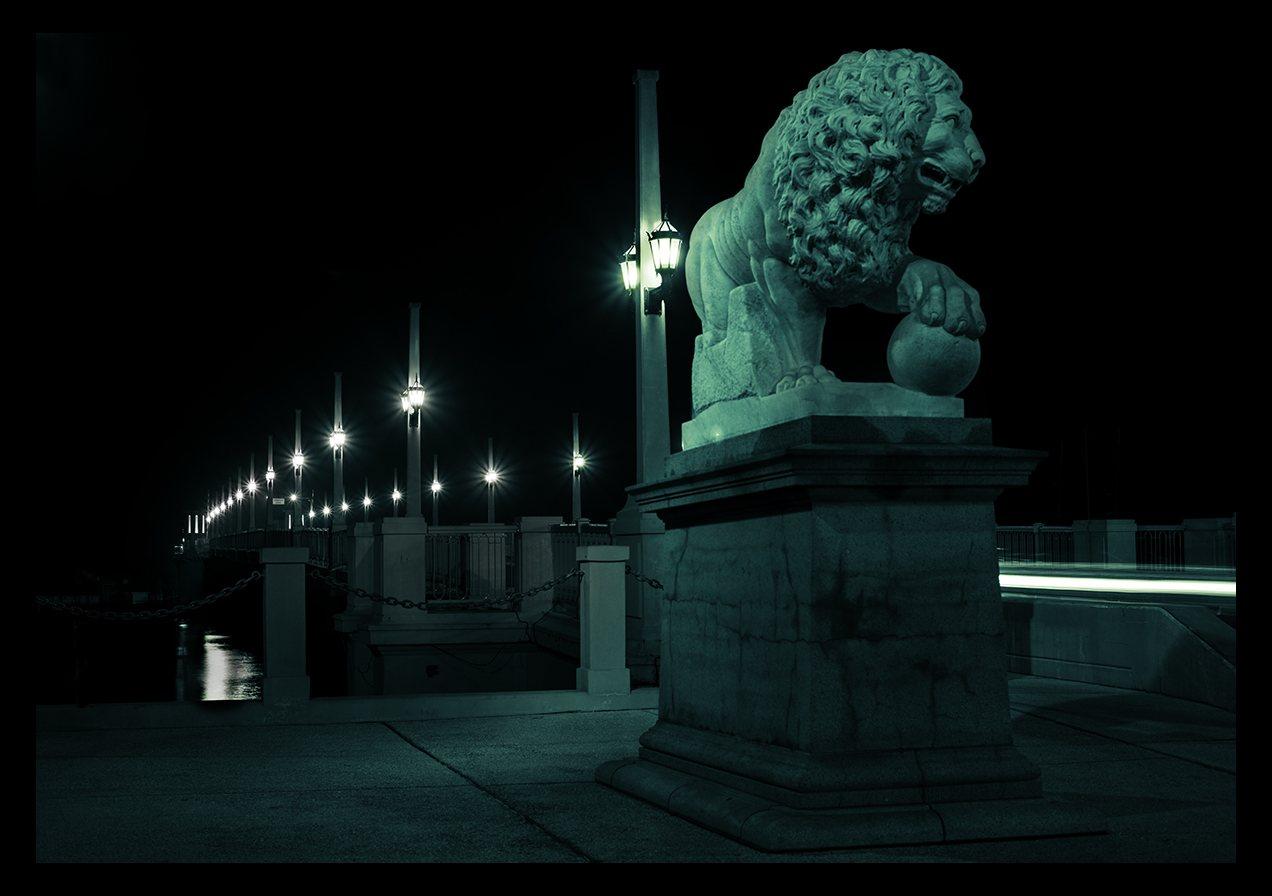 jim-austin-jimages-nikon-three-lenses-bridge-lions