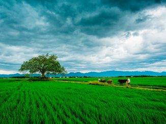 landscape-photography-tips-for-begginers