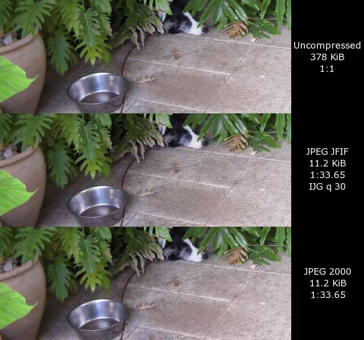whats-the-difference-between-raw-and-jpg