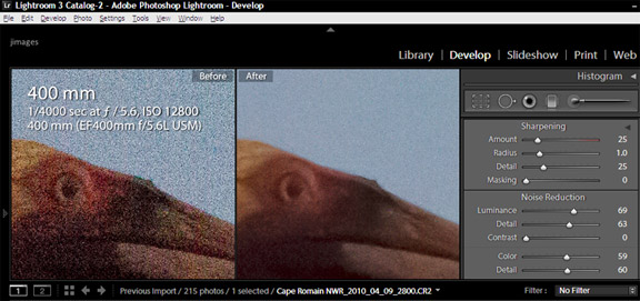 Screen capture of Lightroom 3 tools