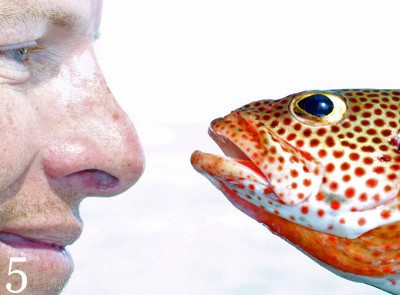 Photo of a man and fish looking at each other by Jim Austin.