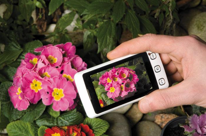 Photo of camera taking a photo of flowers by Piero Leonardi