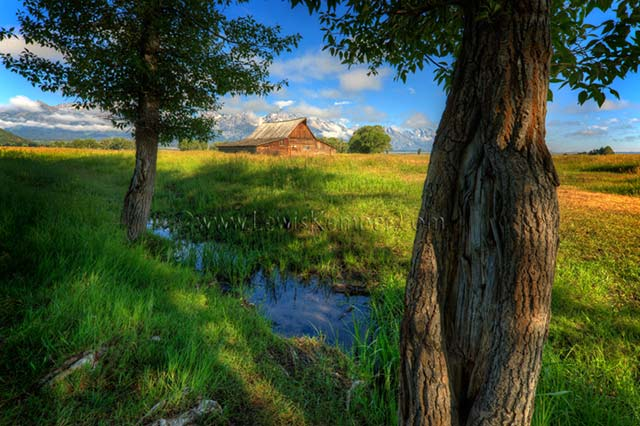 Landscape image of red barn and trees at Grand Teton National Park in Wyoming by Lewis Kemper.