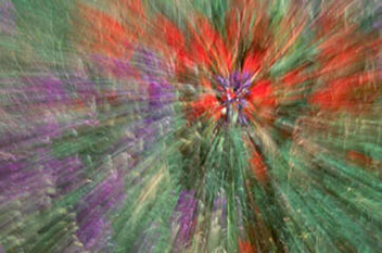 Abstract floral with red, purple and green creating by zooming the camera lens by Andy Long.