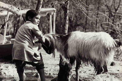 Photo of boy and goat in Srinigar, Kashmir, India by Ron Veto