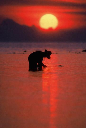 Photo of Kio Phi Phi Island, Thailand by Ron Veto