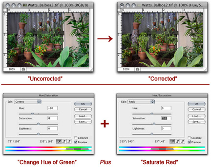 Example images and screen shots showing Hue/Saturation color corrections made in Photoshop by John Watts.
