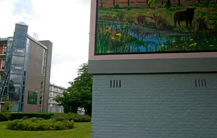 Biodiversity: photo of green space and nature painting on a flat in the city of Rotterdam by Edwin Brosens