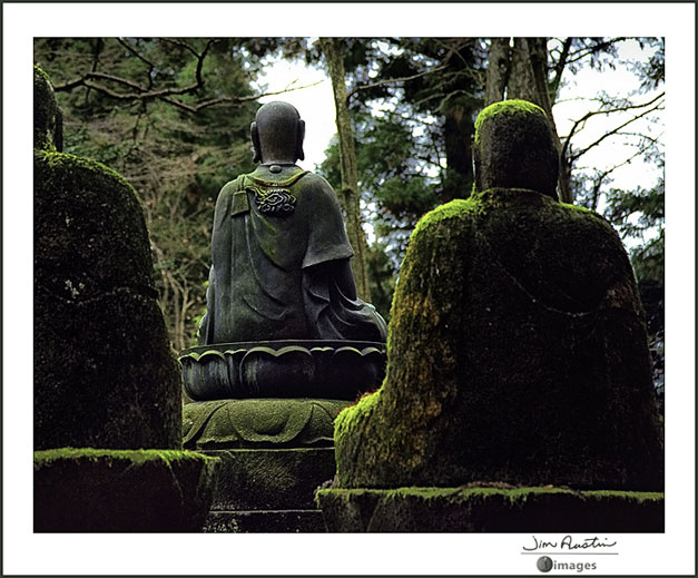 Photo of Buddha statues by Jim Austin