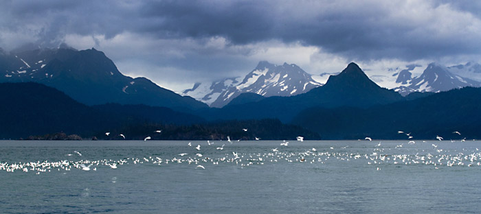Photo of Katchemak Bay Mountains in Homer, Alaska by Barry Epstein