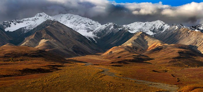 Alaska colors. Autumn photo of Alaska Mountain Range in Denali Park by Barry Epstein
