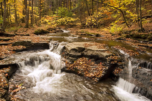 Autumn color photo of Double Run waterfall in the Allegheny National Forest in Pennsylvania by Robert Hitchman