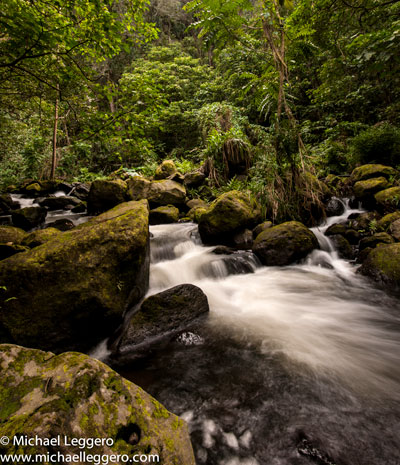 Photo of river with silky water effect in Hawaii by Michael Leggero