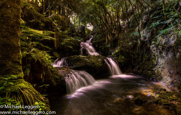 Photo of jungle and river with silky water effect in Hawaii by Michael Leggero