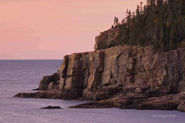 Acadia National Park, Maine: rocks, evergreen trees and shore of Otter Cliff at dawn by Juergen Roth.