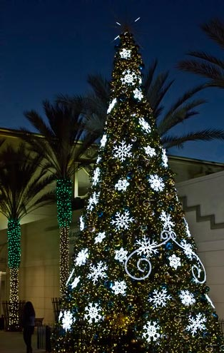 Photo of Christmas tree & decorations at dusk by Noella Ballenger