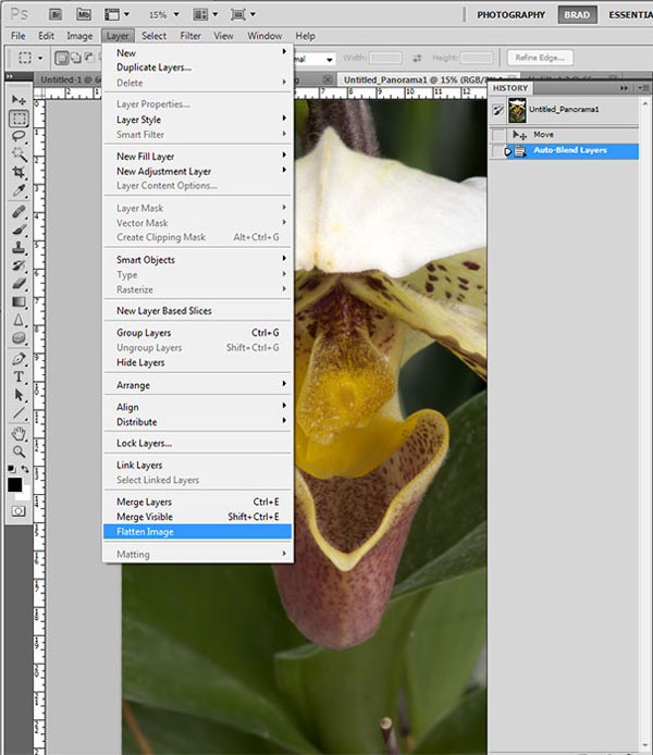 Screen shot of flattened orchid photo after Focus Stacking in Photoshop CS5 by Brad Sharp