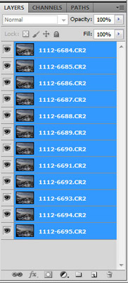 Screen capture of Layers used for Focus Stacking in Photoshop CS5 by Brad Sharp