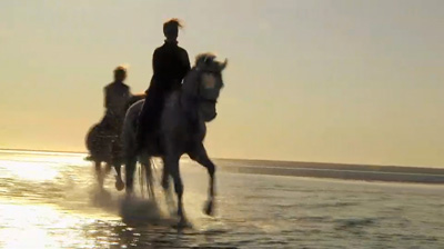Photo of galloping horses and their riders on beach at sunset by Gert Wagner