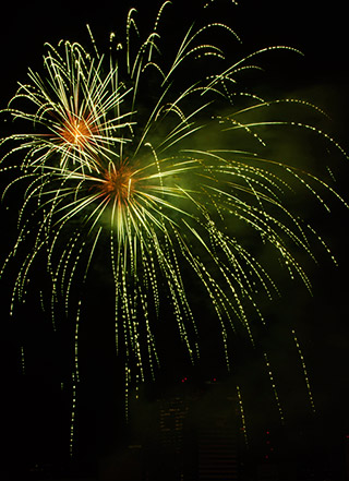 Green and gold fireworks image by Marla Meier.