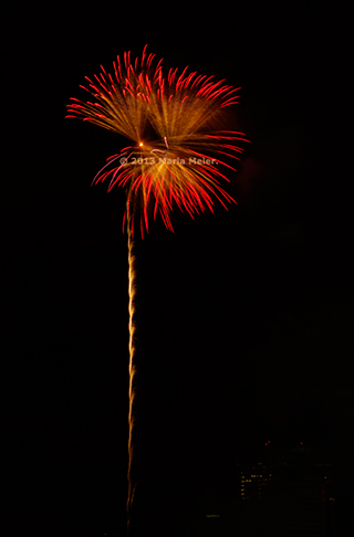 Fireworks image that looks like a red flower by Marla Meier.