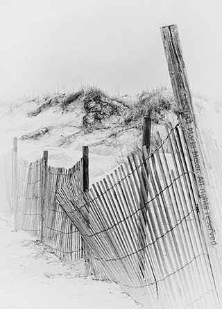 Black and white photo of a picket fence on the dunes by Marla Meier.