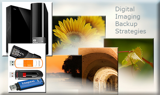 Collage of various digital imaging backup solutions by Marla Meier.