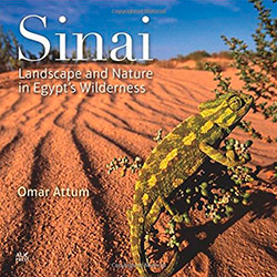 Cover of book Sinai: Landscape and Nature in Egypt's Wilderness.