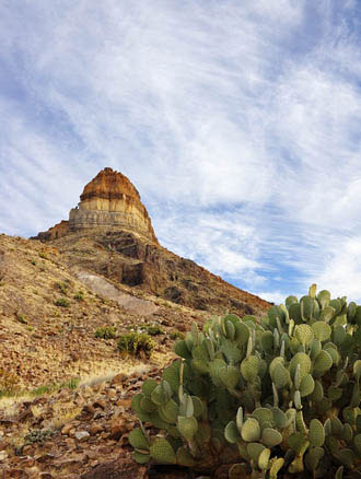 Photo of Cerro Castolo at Big Bend National Park by Gary Nored
