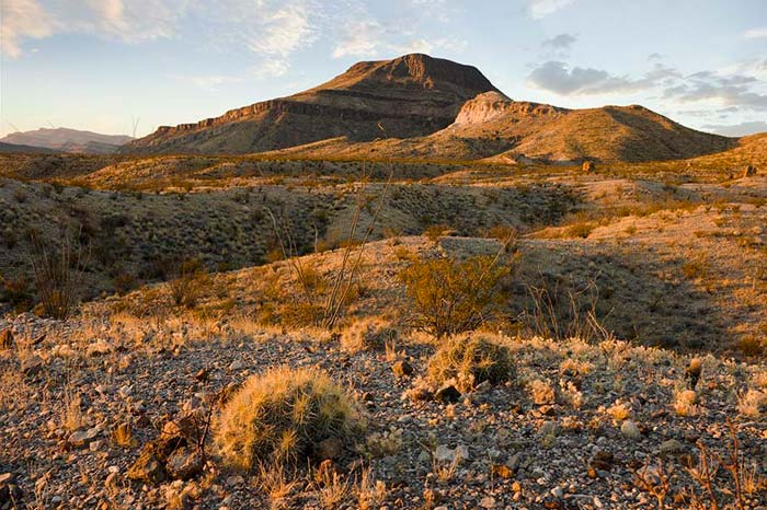 Photo of winter Chihuahuan Desert at Big Bend National Park by Gary Nored