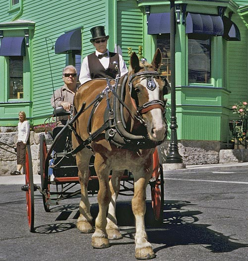 Photo of horse-drawn carriage in Lumenburg, Nova Scotia by Mike Goldstein