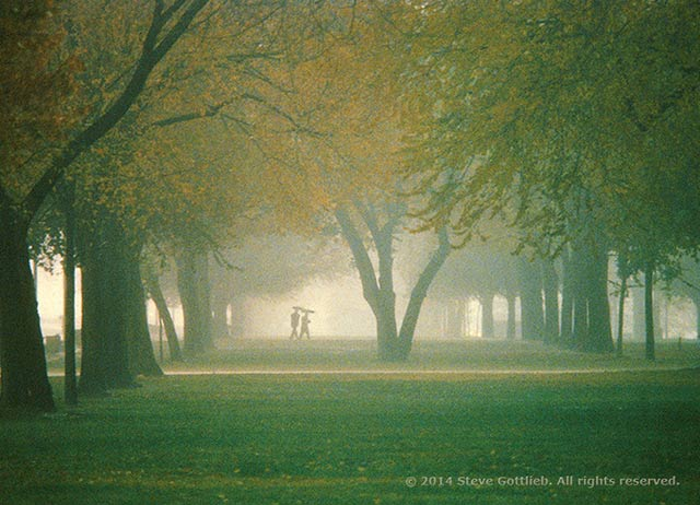 Misty, moody image of a couple walking in a tree lined park by Steve Gottlieb.