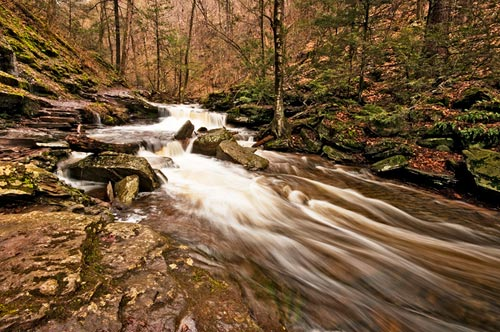 Photo of Mohican Falls at Ricketts Glenn State Park by Robert Hitchman