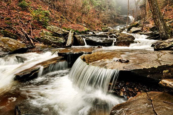 Photo of F.L. Ricketts Falls at Ricketts Glenn State Park by Robert Hitchman