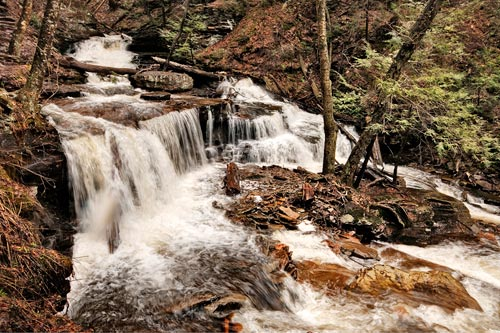 Photo of Delaware Falls at Ricketts Glenn State Park by Robert Hitchman