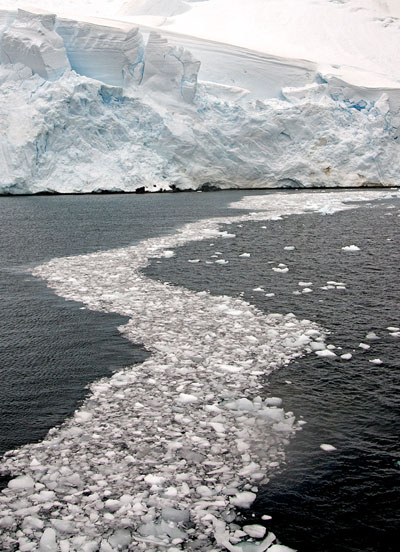 Photo of glacier and ice path on Lemaire Channel, Antarctica by Cliff Kolber