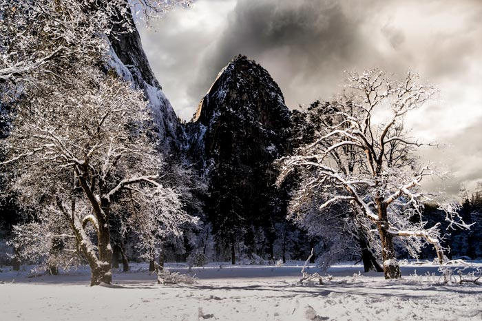 Photo of mountain and trees covered in snow in Yosemite National Park by Michael Leggero.