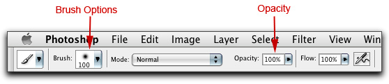 Screen shot of Photoshop Tools Panel and Brush Tool Options and Opacity.