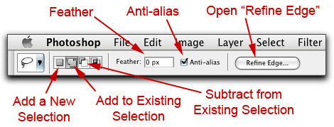 Screen shot of the Photoshop Lasso Tool options in the Option Bar.