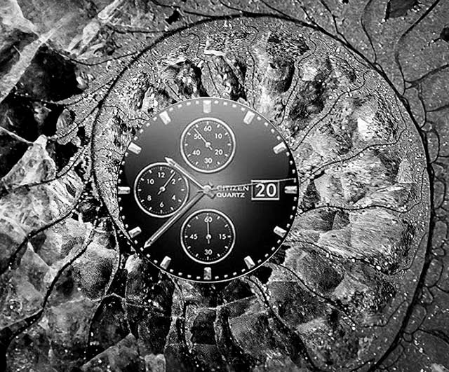 Image of clock inside of a slice of a petrified seashell by Jim Austin.