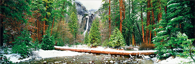 Muir's Window: winter snow image of waterfall, stream and pine trees by Jeff Mitchum.