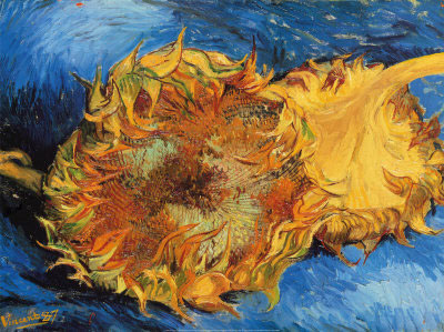 Image of Two Sunflowers by Van Gogh (1887).